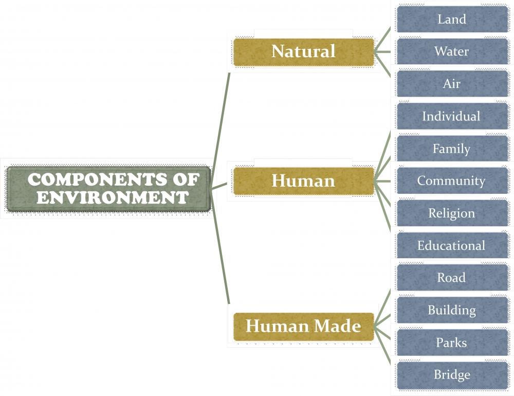 Interrelation Between Natural Resources And Human Resources